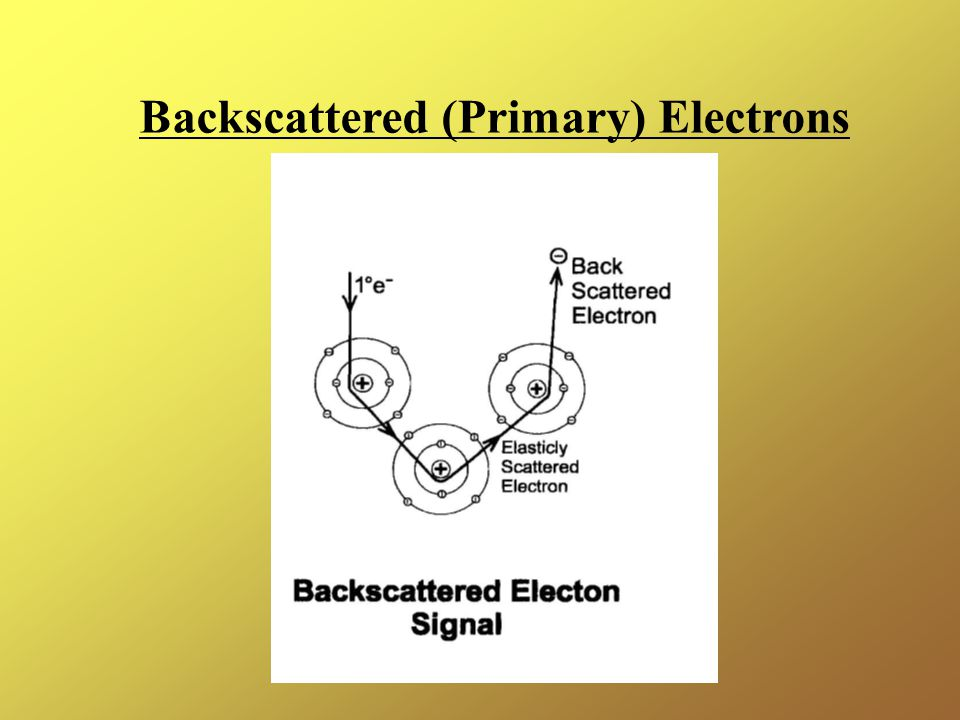 Backscattered (Primary) Electrons