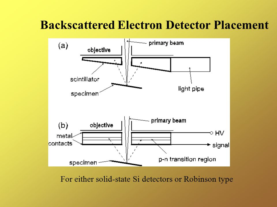 Backscattered Electron Detector Placement