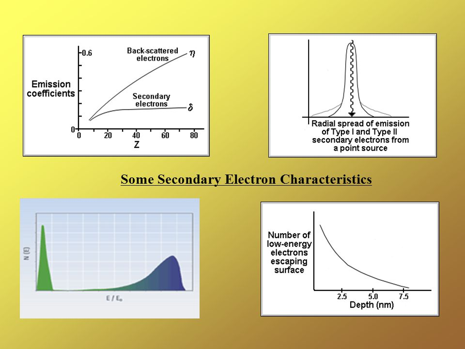 Some Secondary Electron Characteristics