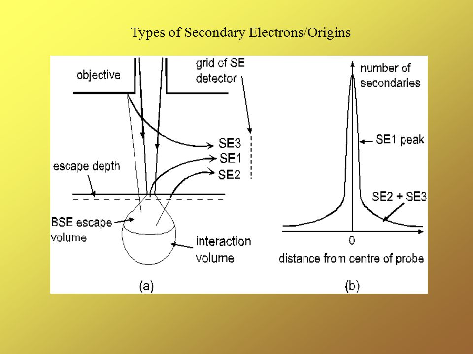 Types of Secondary Electrons/Origins