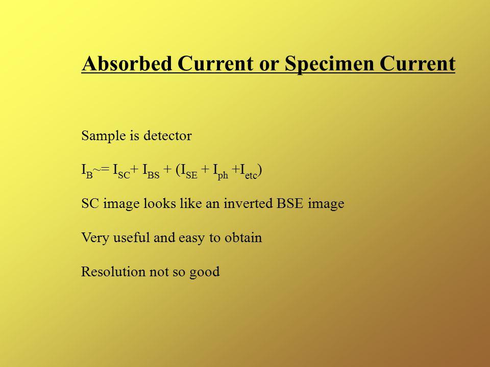Absorbed Current or Specimen Current