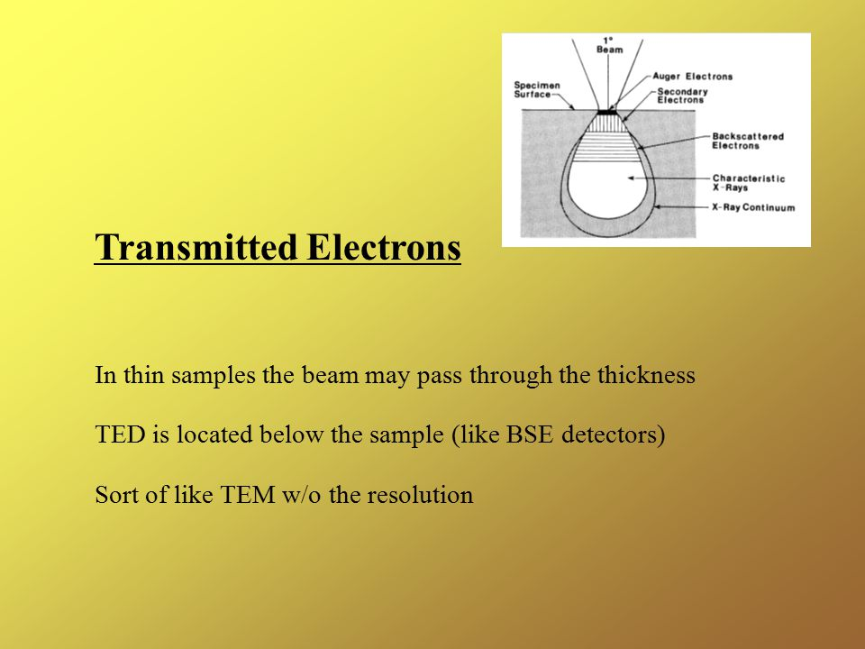 Transmitted Electrons