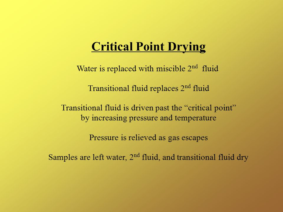 Critical Point Drying Water is replaced with miscible 2nd fluid