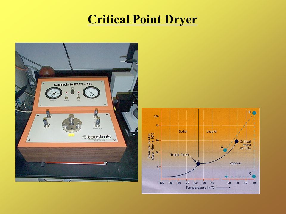 Critical Point Dryer