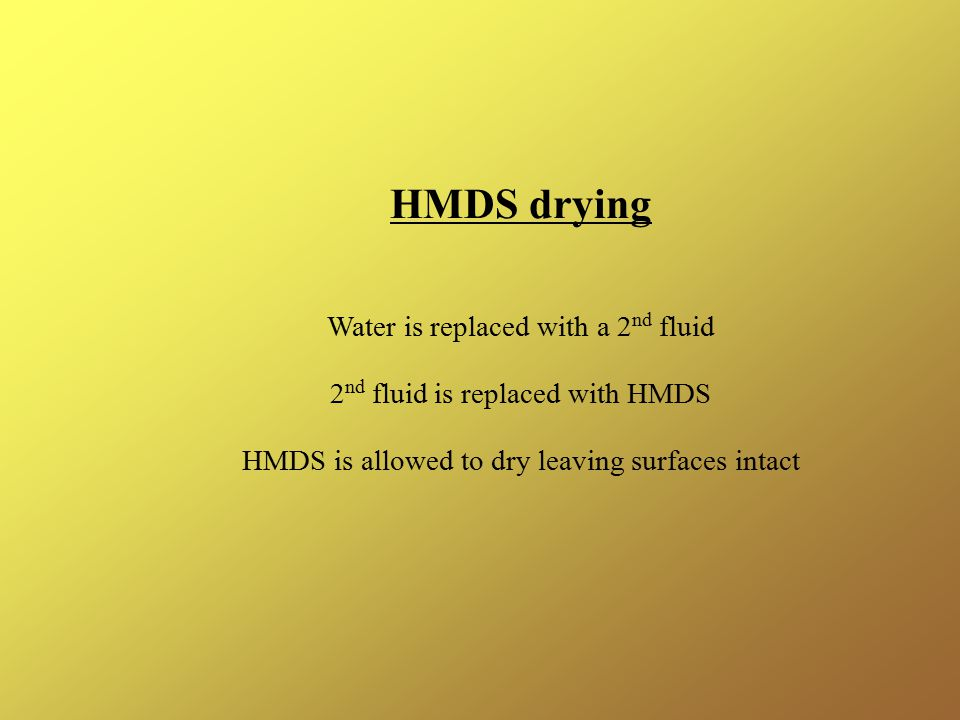HMDS drying Water is replaced with a 2nd fluid