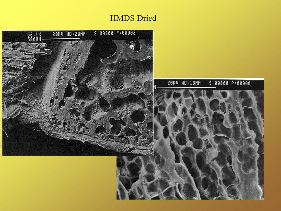 HMDS Dried