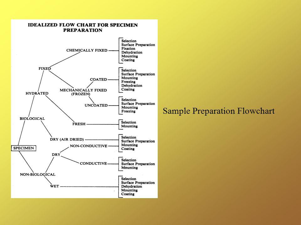 Sample Preparation Flowchart