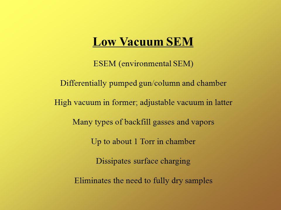 Low Vacuum SEM ESEM (environmental SEM)