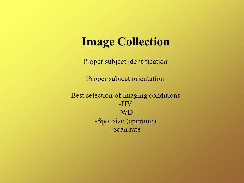 Image Collection Proper subject identification