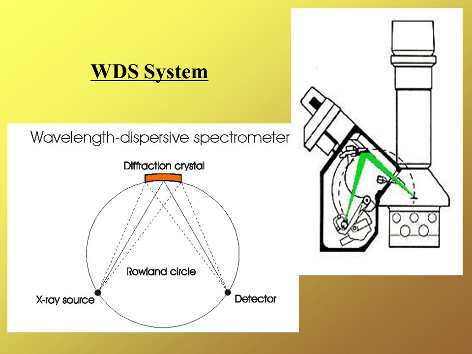 WDS System