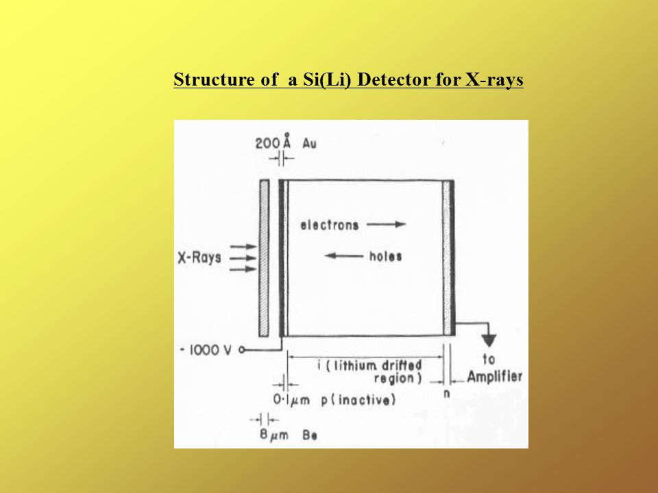 Structure of a Si(Li) Detector for X-rays