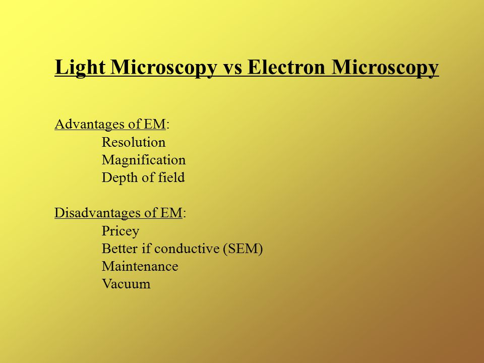 Light Microscopy vs Electron Microscopy