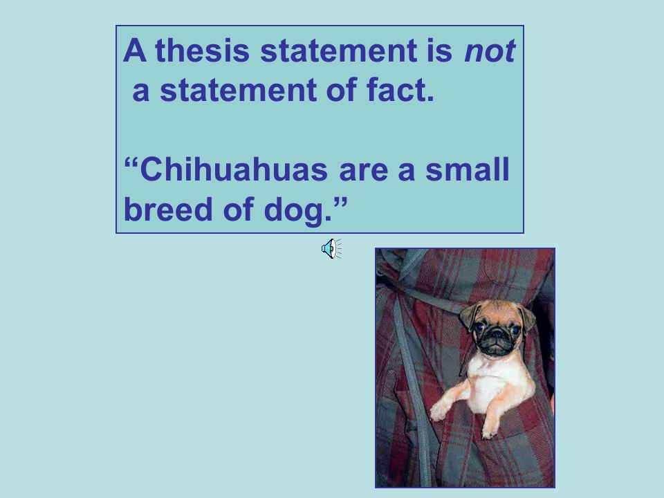 A thesis statement is not