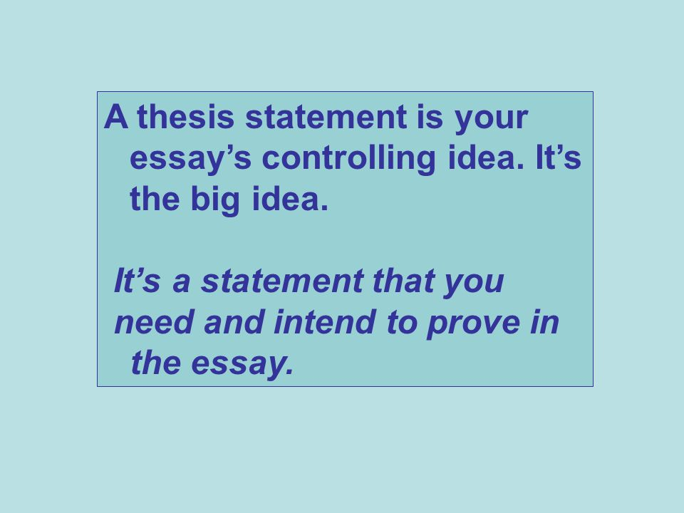 A thesis statement is your essay's controlling idea. It's the big idea.