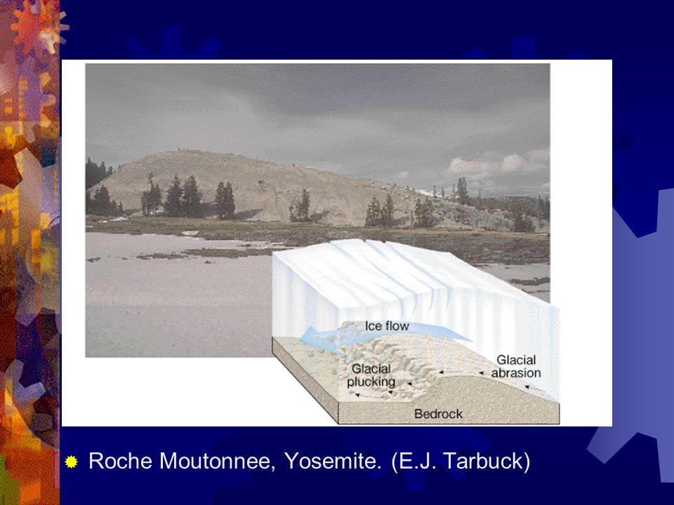 Roche Moutonnee, Yosemite. (E.J. Tarbuck)