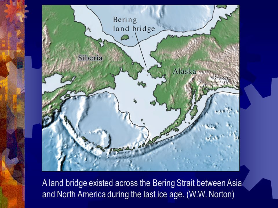 A land bridge existed across the Bering Strait between Asia and North America during the last ice age.