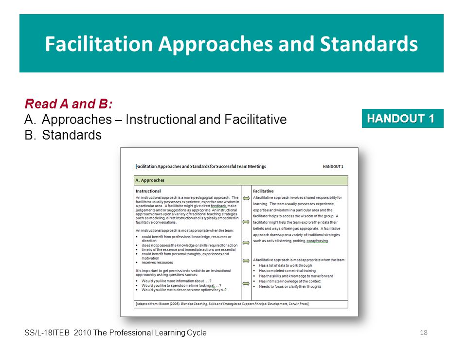 Facilitation Approaches and Standards