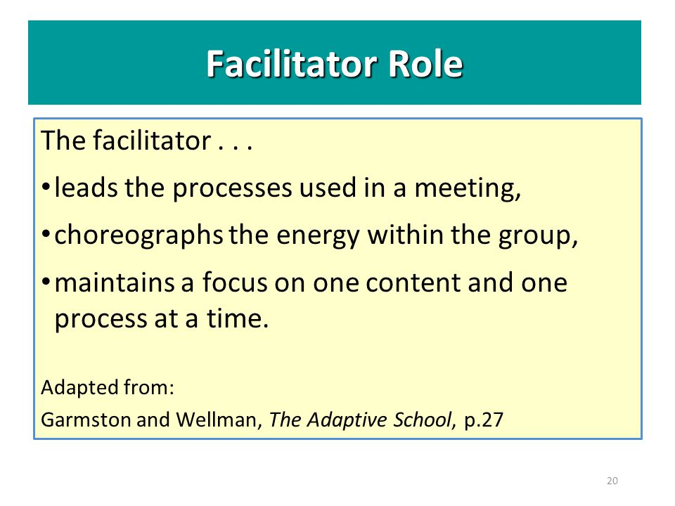 Facilitator Role The facilitator . . .