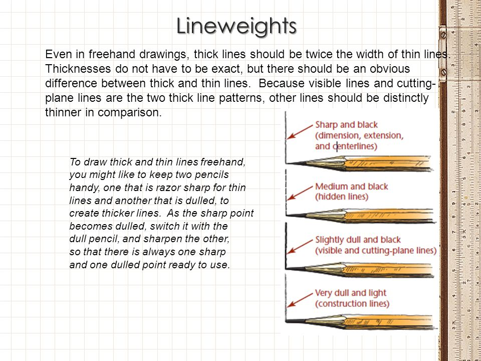 Lineweights Even in freehand drawings, thick lines should be twice the width of thin lines.