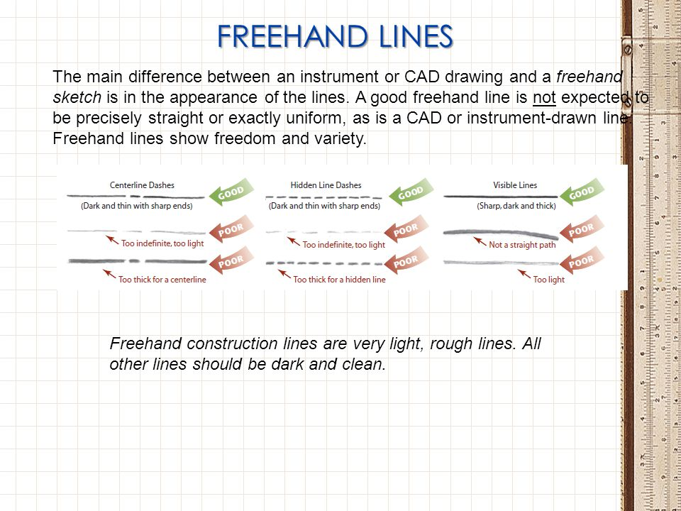 FREEHAND LINES