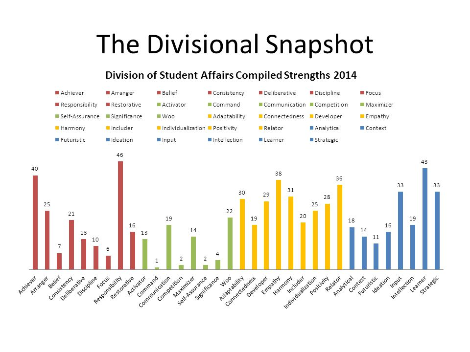 The Divisional Snapshot