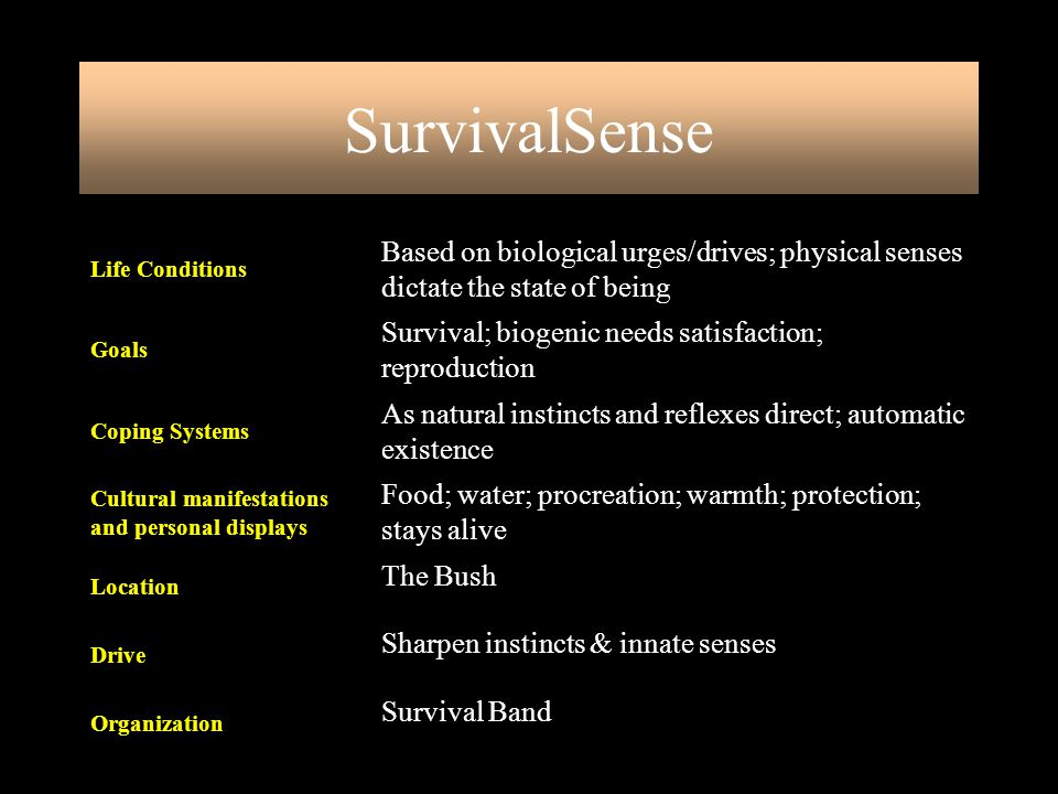 SurvivalSense Survival Band. Organization. Sharpen instincts & innate senses. Drive. The Bush. Location.