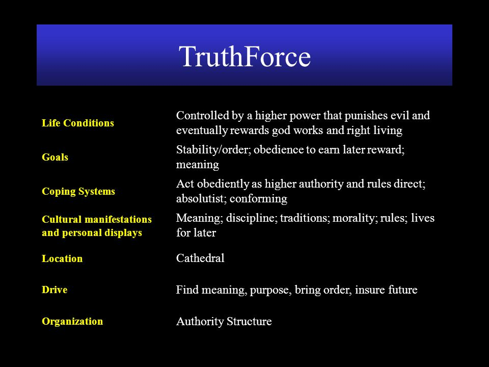 TruthForce Authority Structure. Organization. Find meaning, purpose, bring order, insure future. Drive.