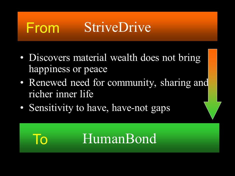 StriveDrive From HumanBond To