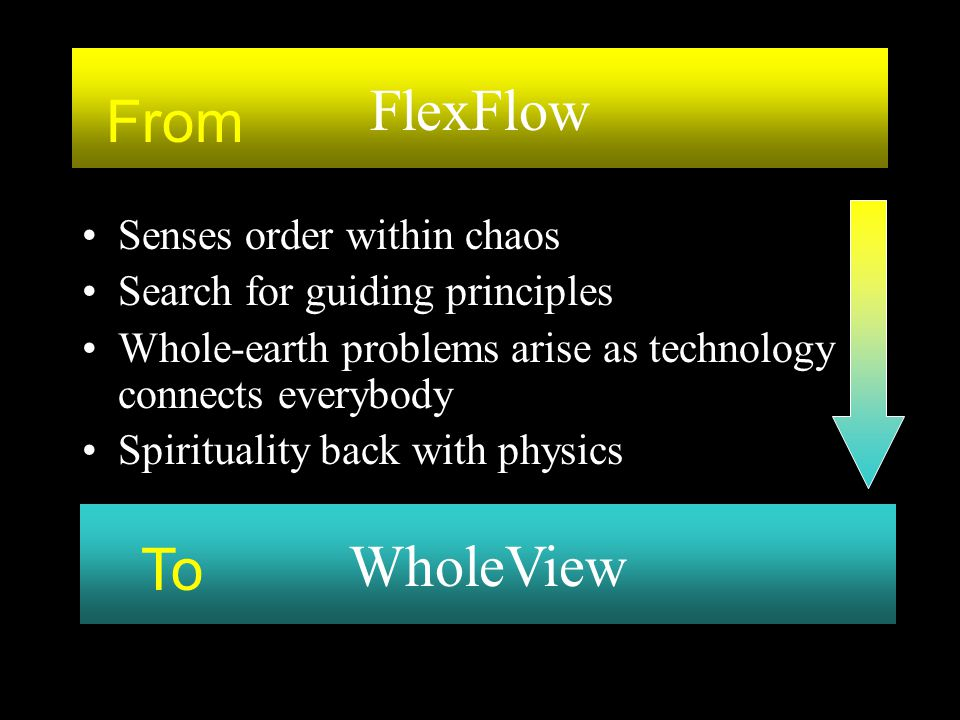 FlexFlow From WholeView To Senses order within chaos
