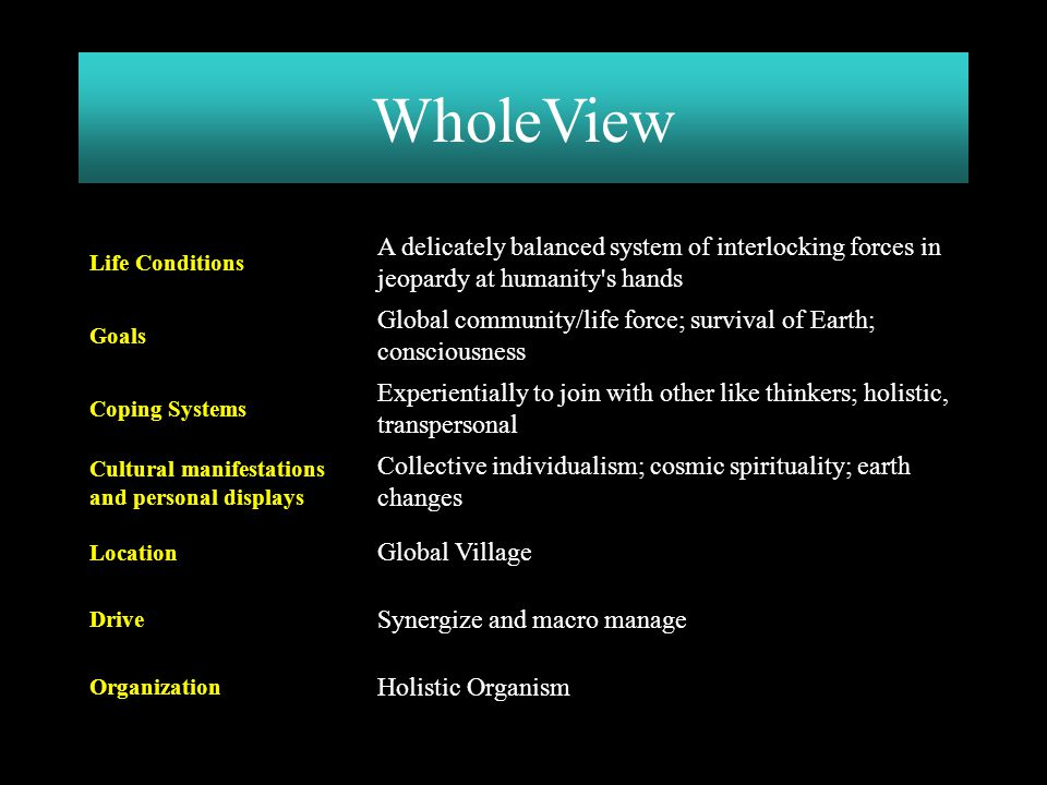 WholeView Holistic Organism. Organization. Synergize and macro manage. Drive. Global Village. Location.