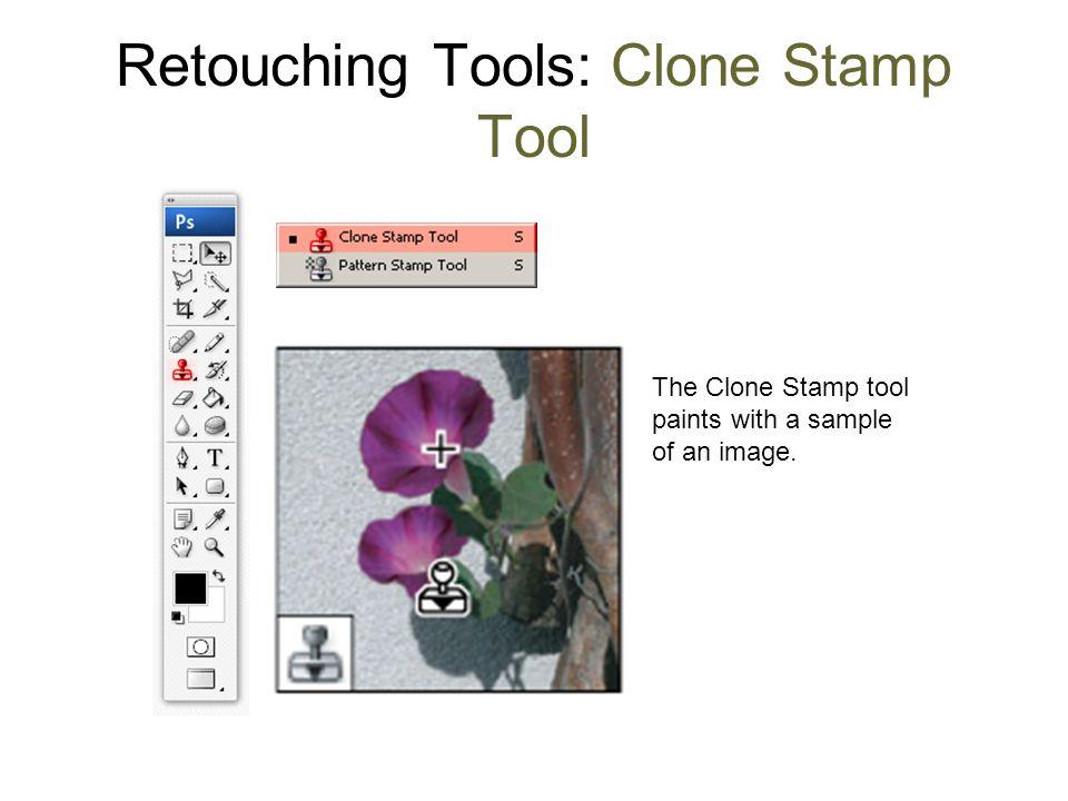 Retouching Tools: Clone Stamp Tool