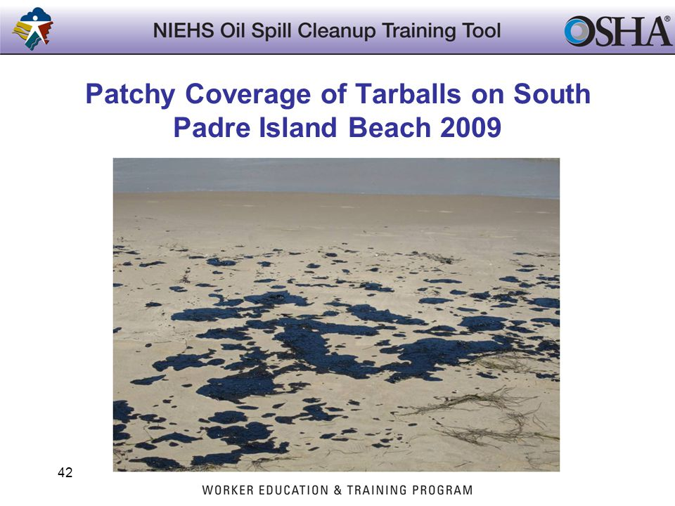 Patchy Coverage of Tarballs on South Padre Island Beach 2009