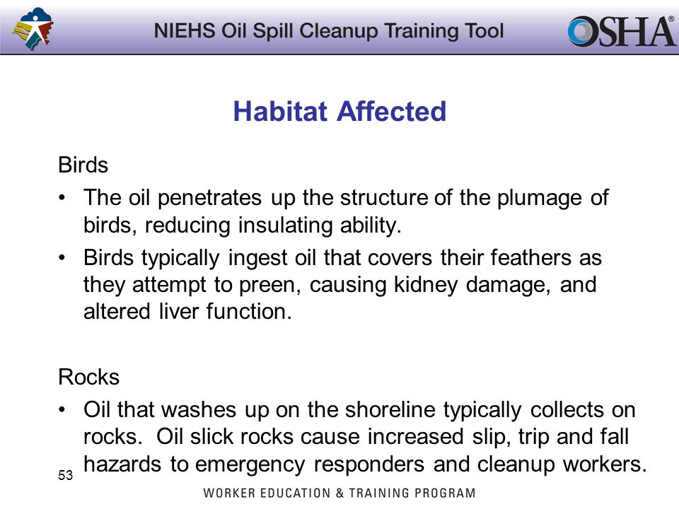 Habitat Affected Birds