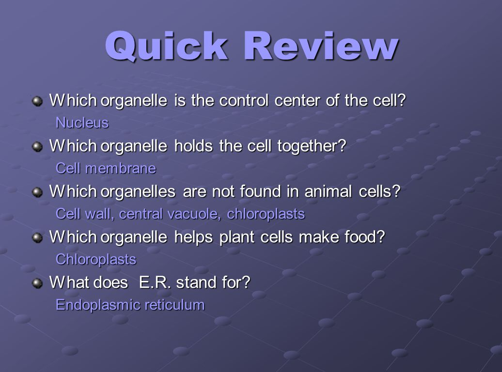 Quick Review Which organelle is the control center of the cell
