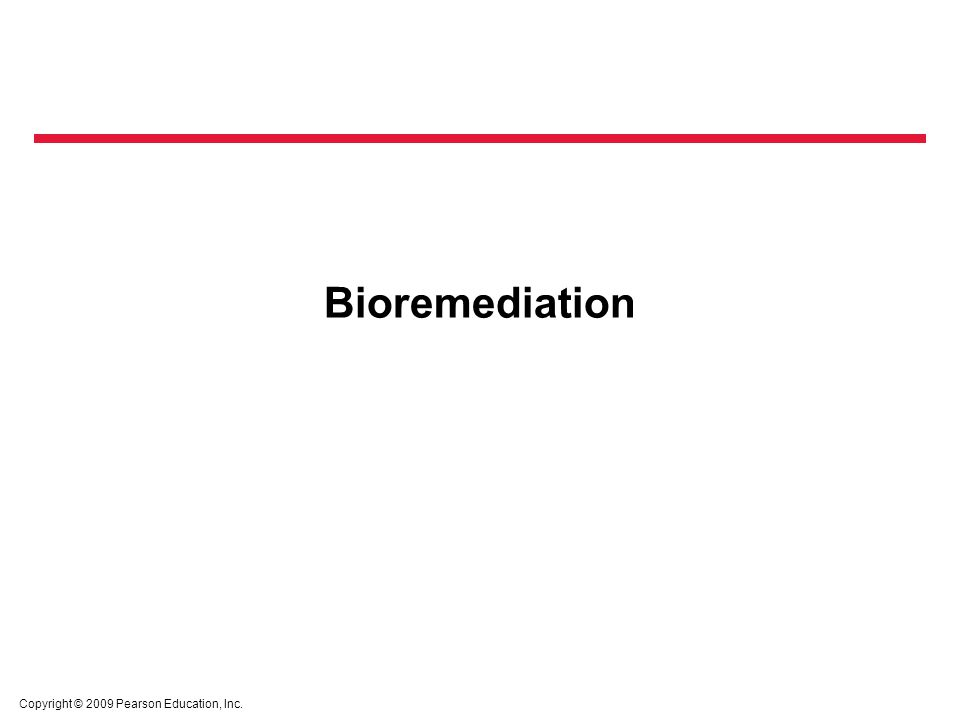 Bioremediation