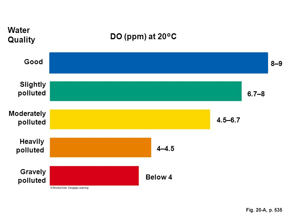 Water Quality DO (ppm) at 20°C Good 8–9 Slightly polluted 6.7–8
