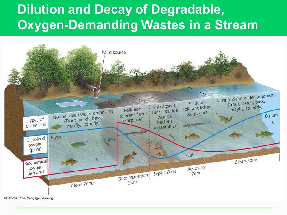Dilution and Decay of Degradable, Oxygen-Demanding Wastes in a Stream