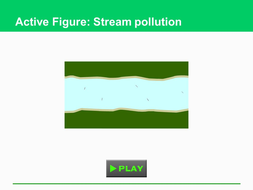 Active Figure: Stream pollution