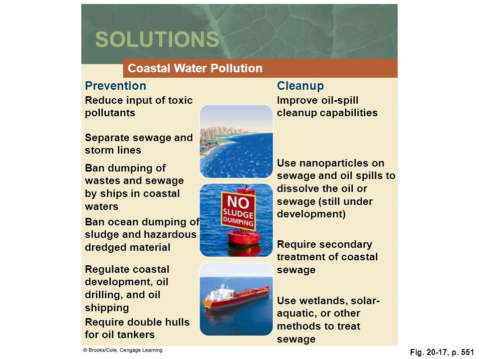 SOLUTIONS Coastal Water Pollution Prevention Cleanup