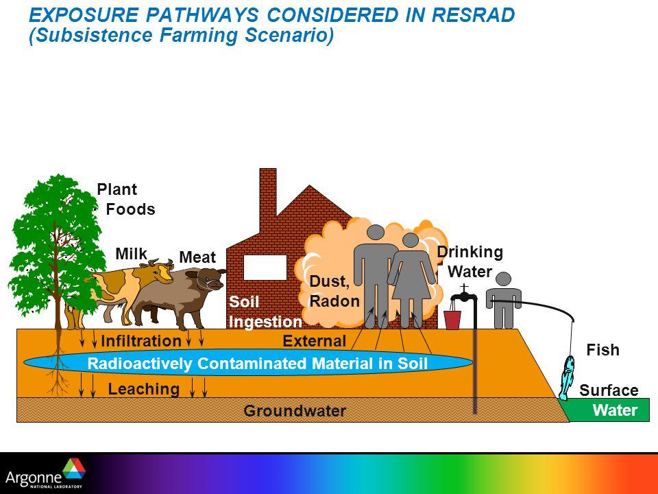 EXPOSURE PATHWAYS CONSIDERED IN RESRAD (Subsistence Farming Scenario)