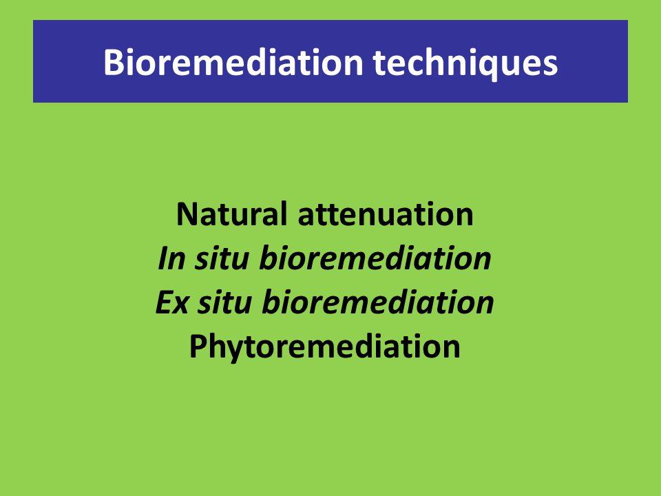 Bioremediation techniques
