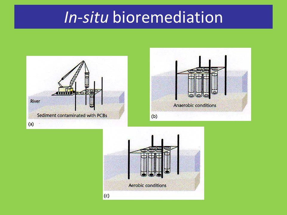 In-situ bioremediation