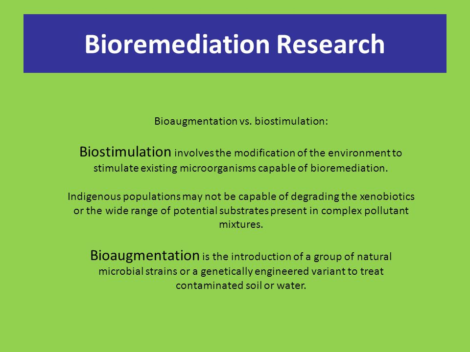 Bioremediation Research