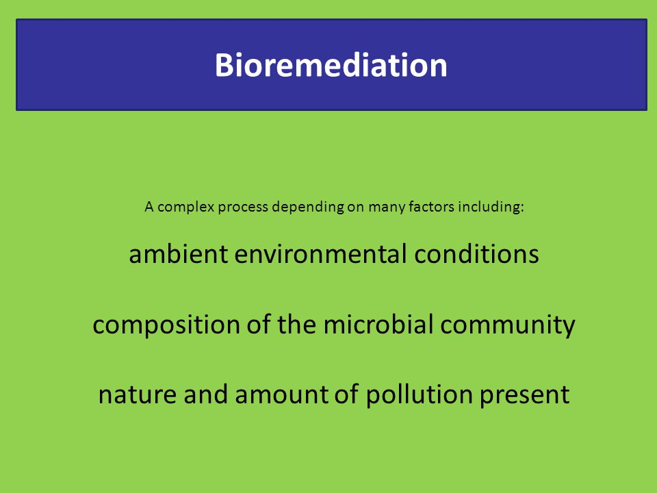 Bioremediation ambient environmental conditions