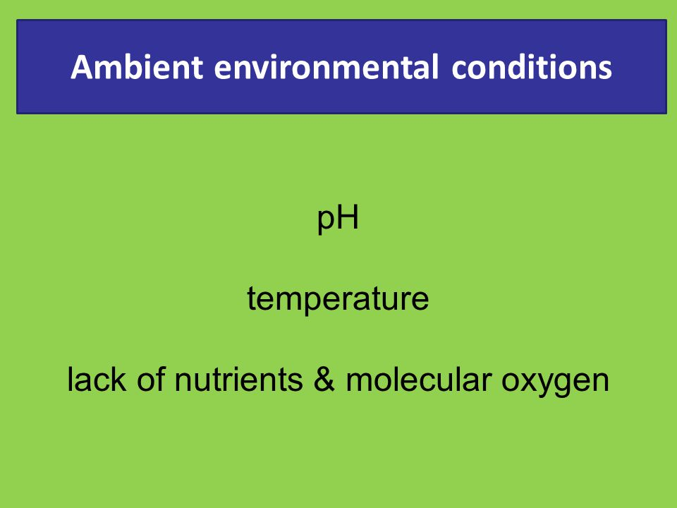 Ambient environmental conditions