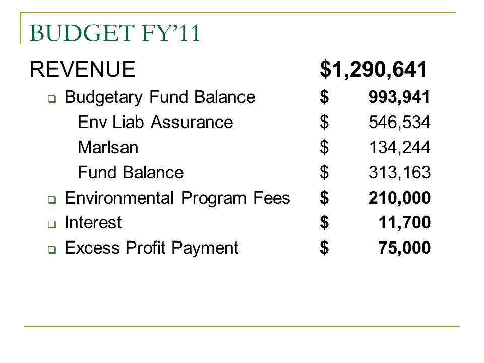 BUDGET FY'11 REVENUE $1,290,641 Budgetary Fund Balance $ 993,941