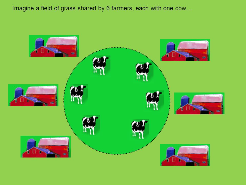 Imagine a field of grass shared by 6 farmers, each with one cow…