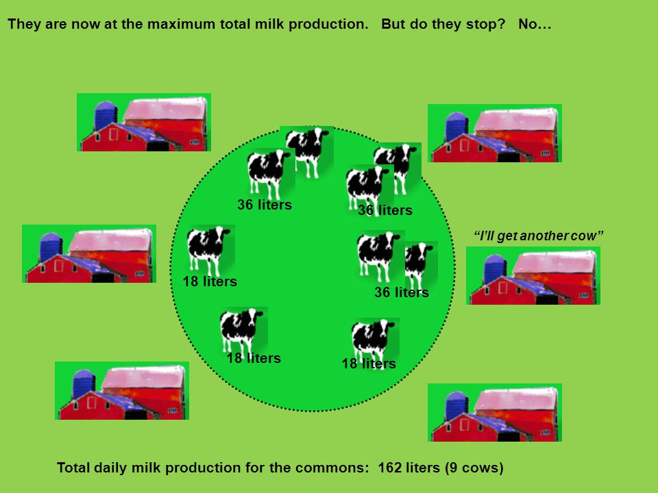 Total daily milk production for the commons: 162 liters (9 cows)