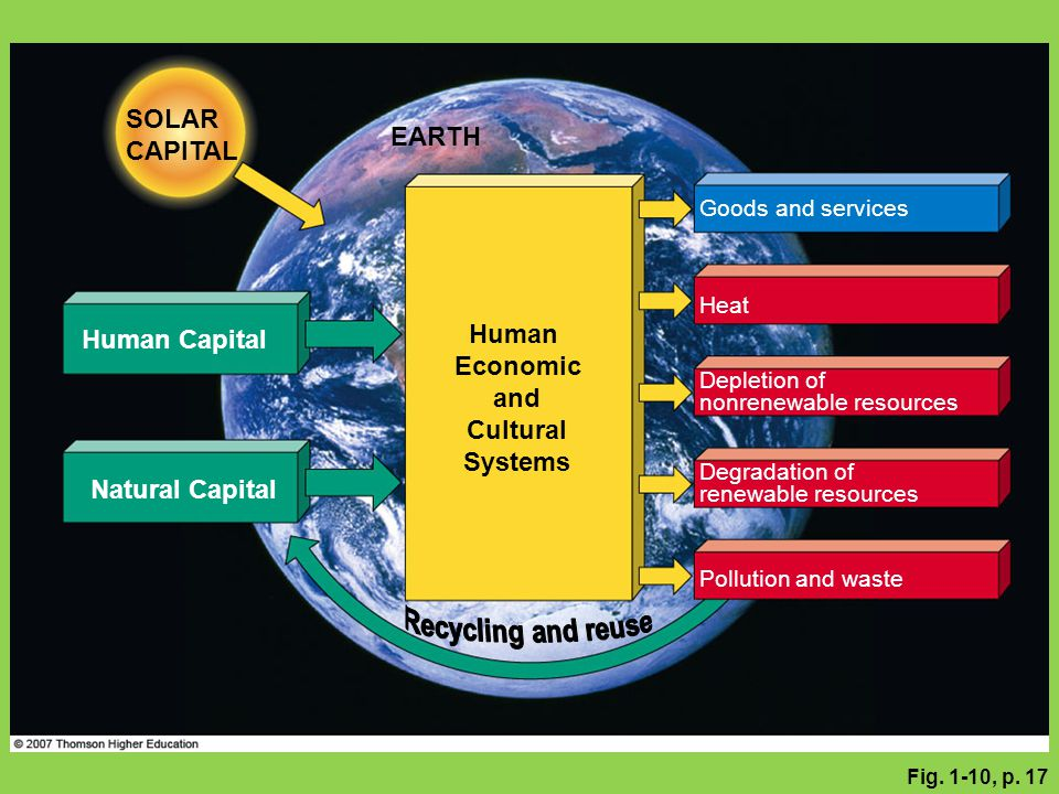 Human Economic and Cultural Systems Recycling and reuse