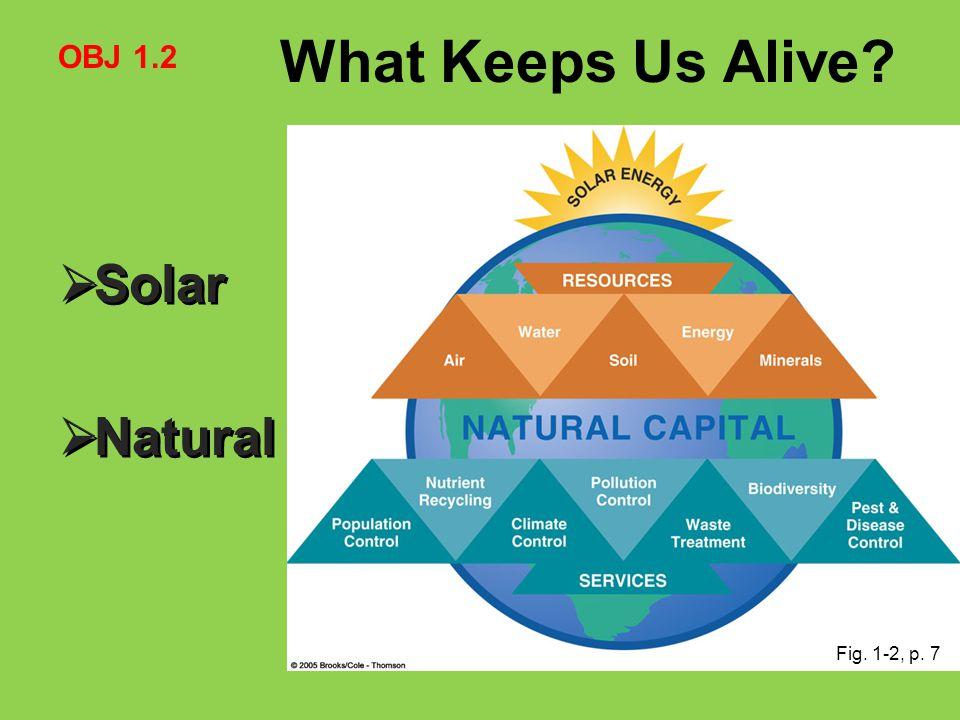 What Keeps Us Alive OBJ 1.2 Solar Natural Fig. 1-2, p. 7